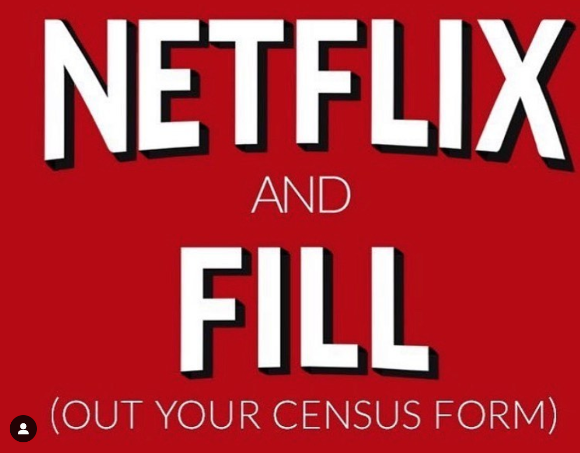 Netflix and Fill (Out your census form)